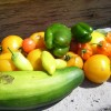 homegrown tomatoes, hot peppers and zucchini
