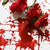 fake red flowers and fake blood